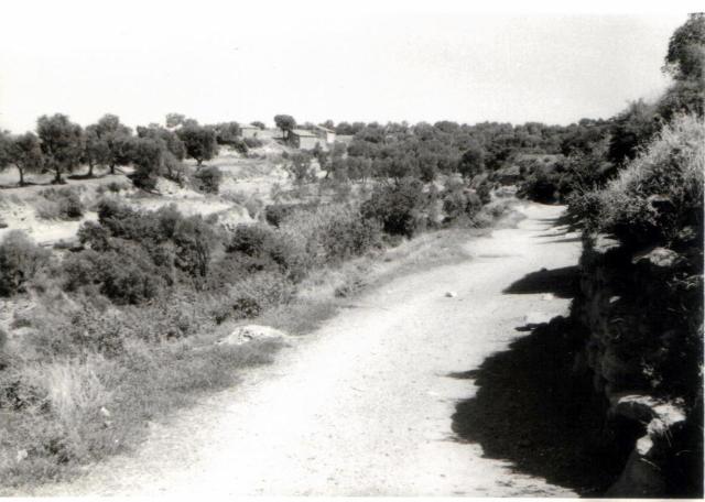 Camino de Costean.