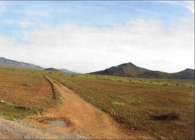 Monte de Sidi Alí y camino de acceso a Zoco el Telatza. (Gentileza de:asensi68desastrezocotelatza.blogspot.com)